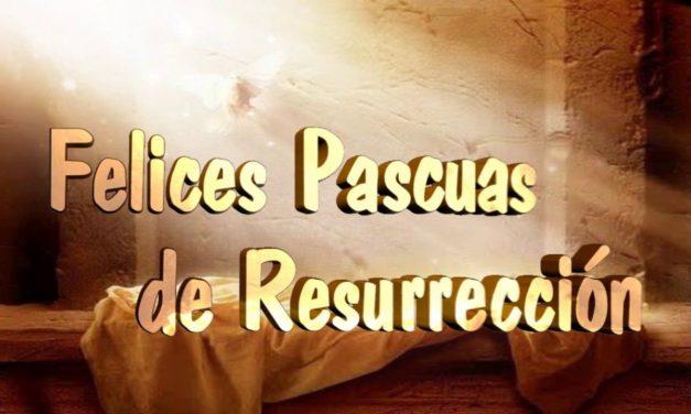 FELICITACIÓN PASCUAL DEL PRESIDENTE DE AECA